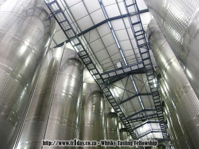Fermentation tanks stretch to the ceiling